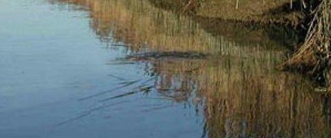 Lago di Scaccia