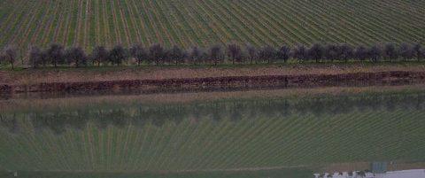 lago Nicodemi